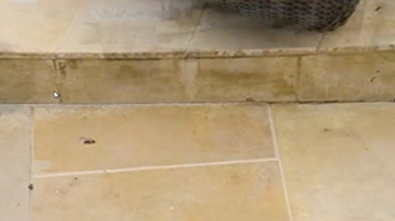 Concrete & Stone Deep Solution Cleaning